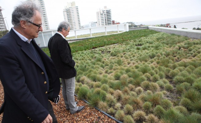 Богати млади българи искали зелени покриви