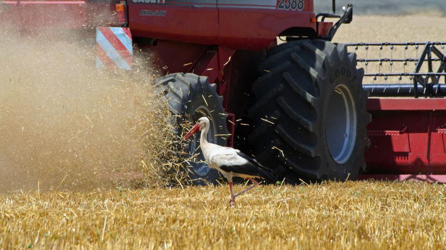 Еколози за ГМО, шистовия газ и храните у нас