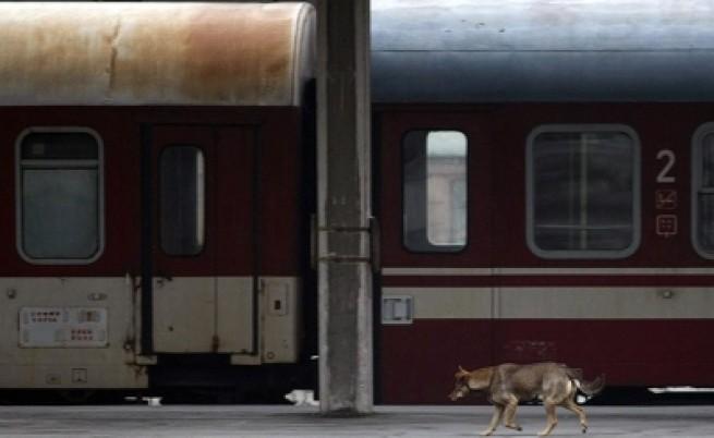 Министерство твърди: 3,6% железничари стачкуват