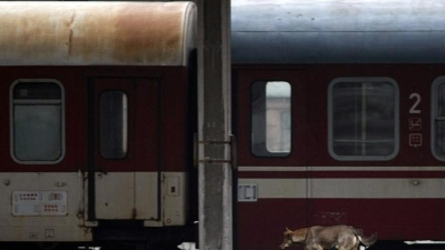 """Министерство твърди: 3,6% железничари стачкуват """"до пълна победа"""""""