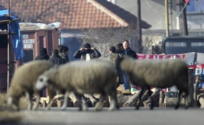 Сърбия не се доближава до Европейския съюз
