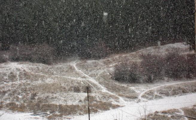 Обилен сняг в Североизточна България