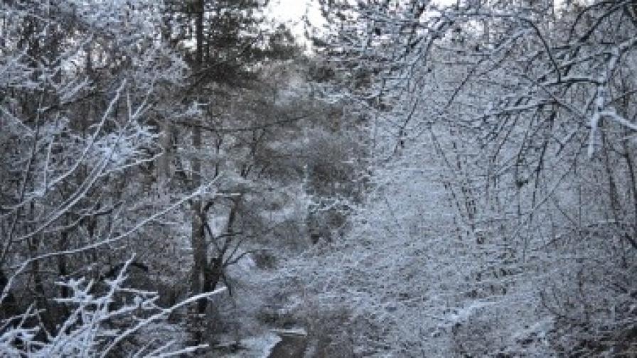 ЕВН: Вече няма места в Родопите без електрозахранване