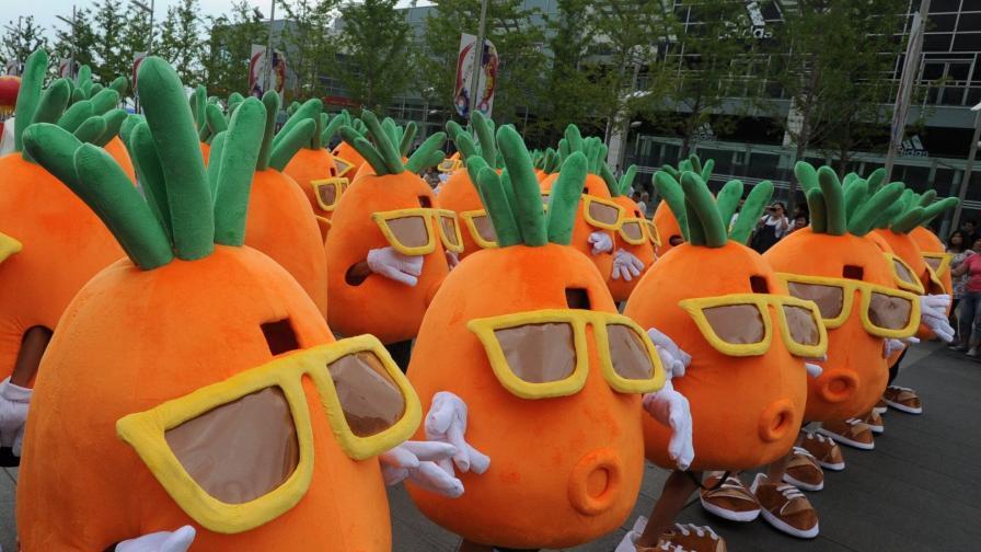 Кой яде най-много моркови в Европа?
