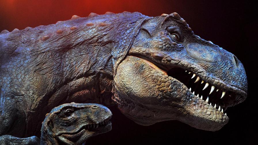 Древните бълхи са нападали дори динозаври