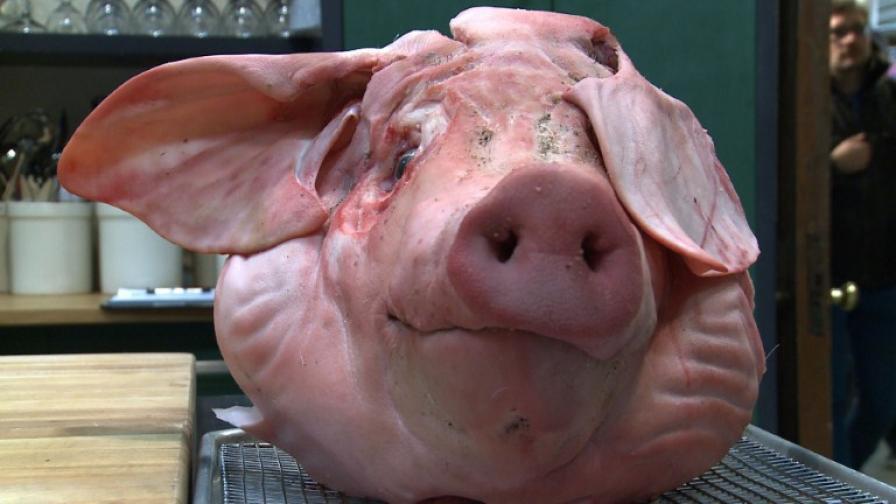 Свинското не се консумира и в исляма, и в юдаизма
