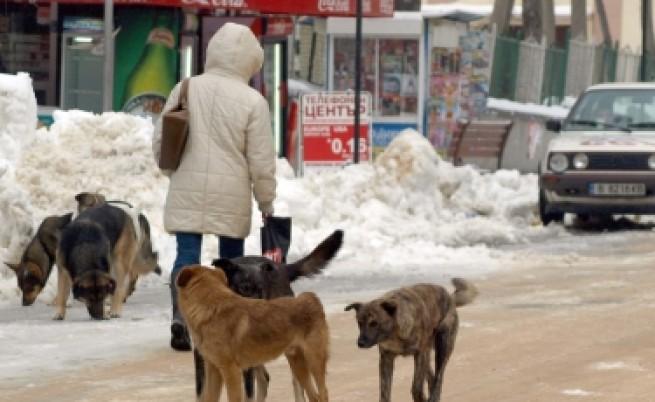 Фандъкова: Да отпадне текстът за кучета