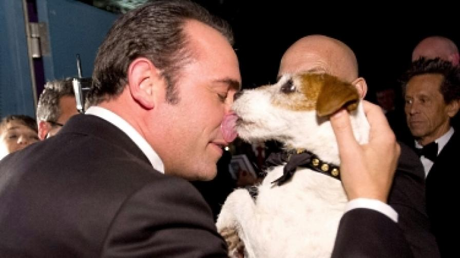 Мемоарите на едно куче звезда