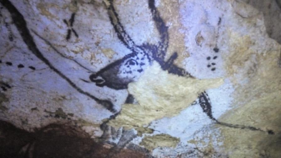 Най-древните скални рисунки - в пещерата Шове