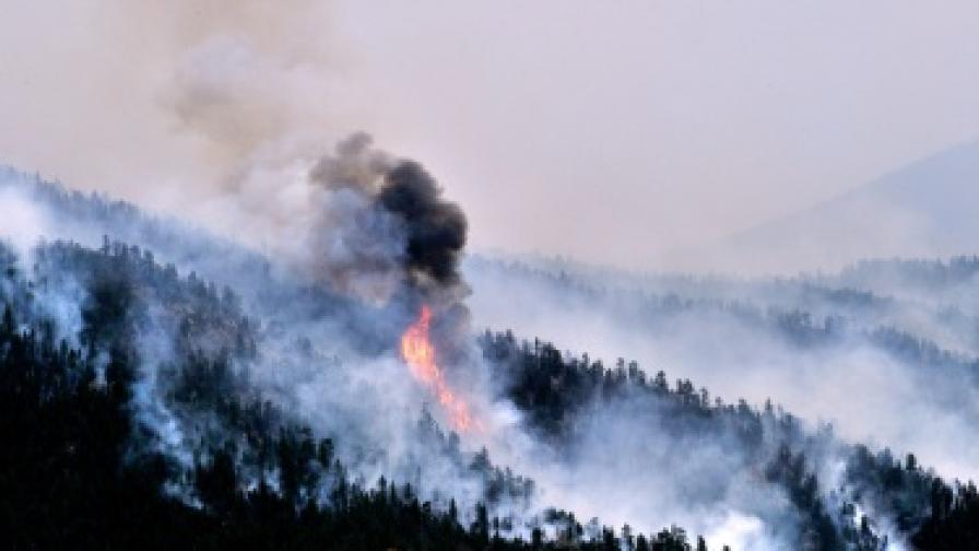 Хиляди се борят с огромни пожари в САЩ