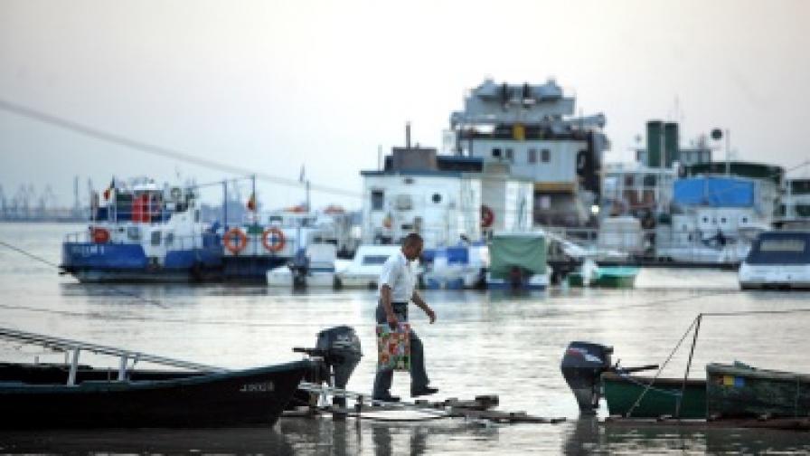 Рибари: Неизвестно растение трови рибата в Дунав