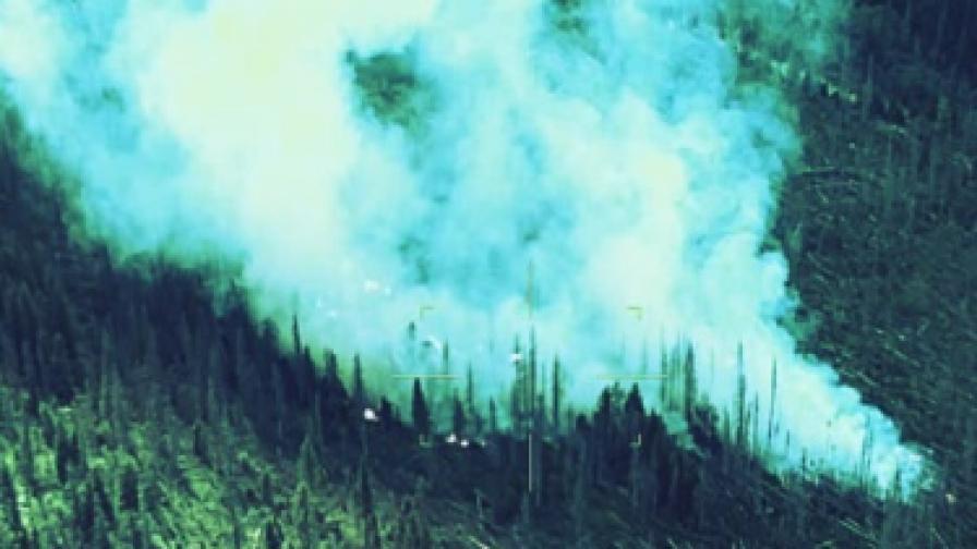 Няма опасност за хората заради пожара на Витоша