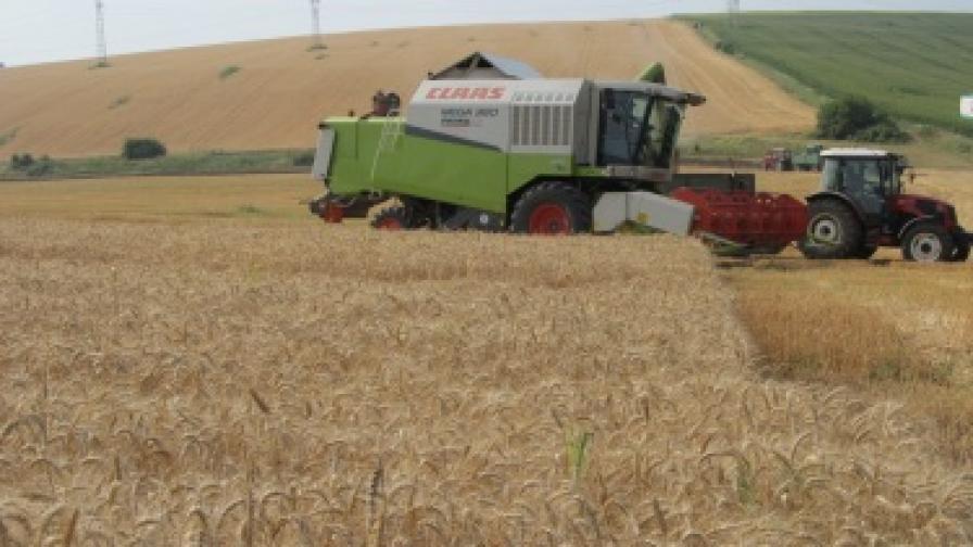 Премиерът Борисов наредил проверка за цената на хляба