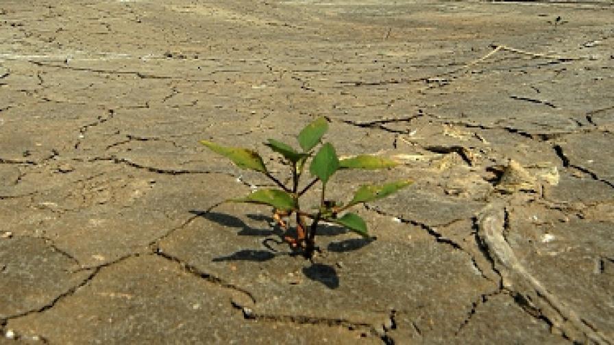 100 млн. жертви на климатичните промени до 2030 г.