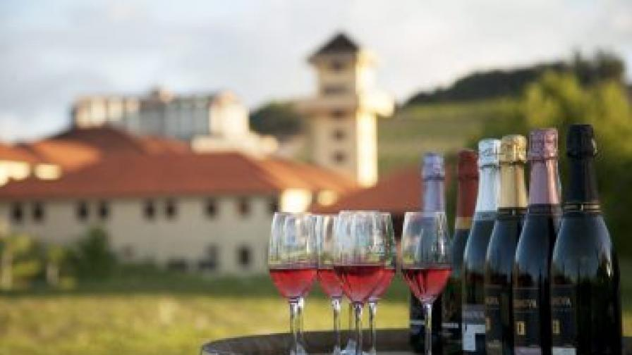 Световният пазар на вино в най-тежка криза