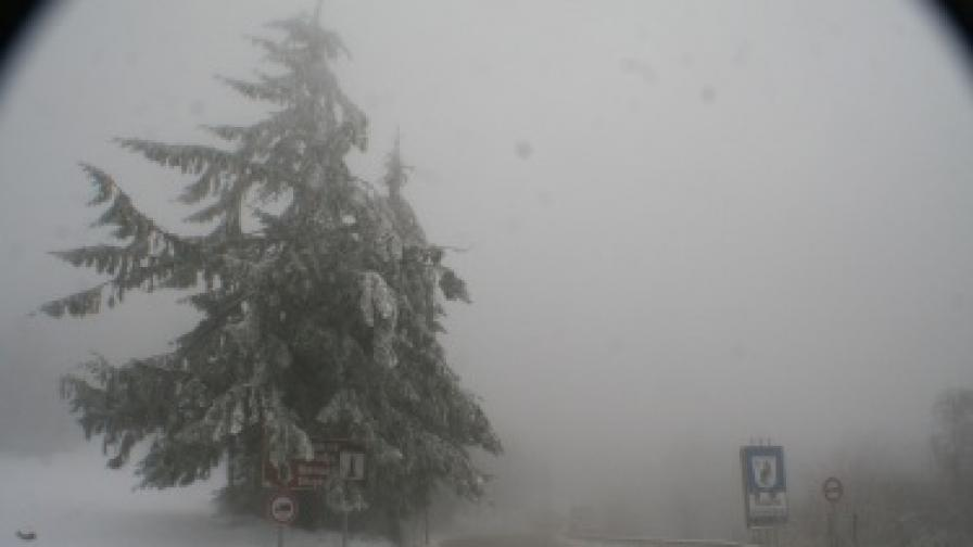 Синоптиците предупреждават за опасни ветрове в цялата страна