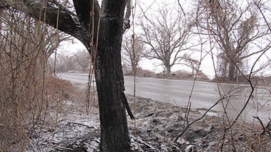 Тежка катастрофа на пътя Бяла-Русе взе 4 жертви
