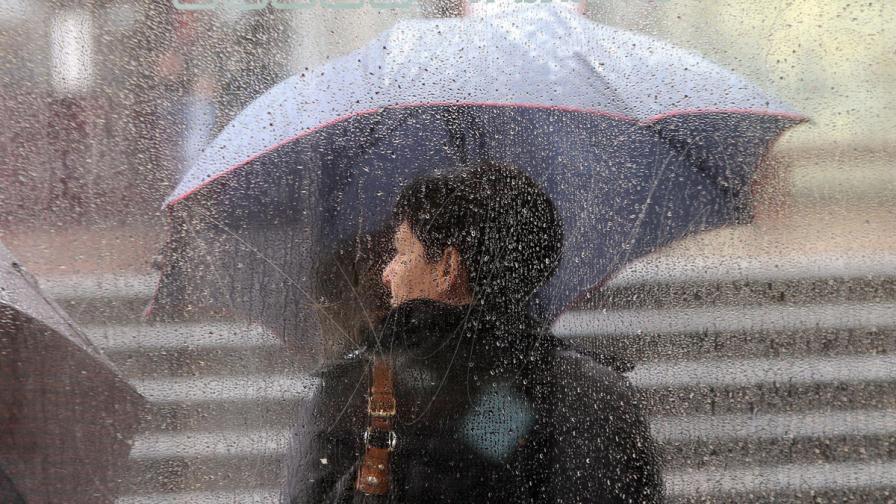 Почти зимен месец май скова Западна Европа