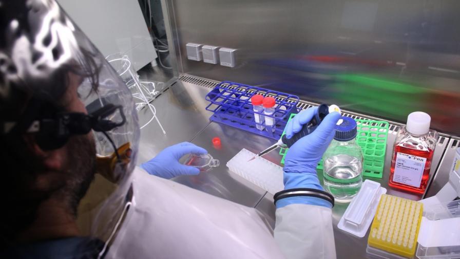 СЗО: Светът трябва да действа бързо, за да овладее коронавируса