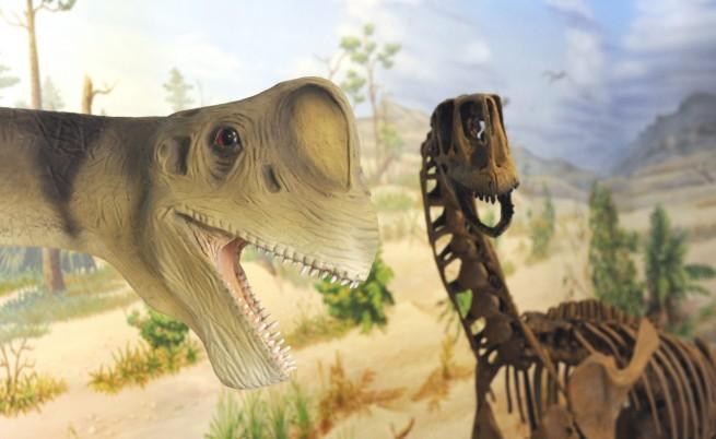 Откриха непознат вид гигантски динозавър
