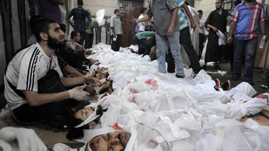 Най-малко 173 убити за 24 часа в Египет