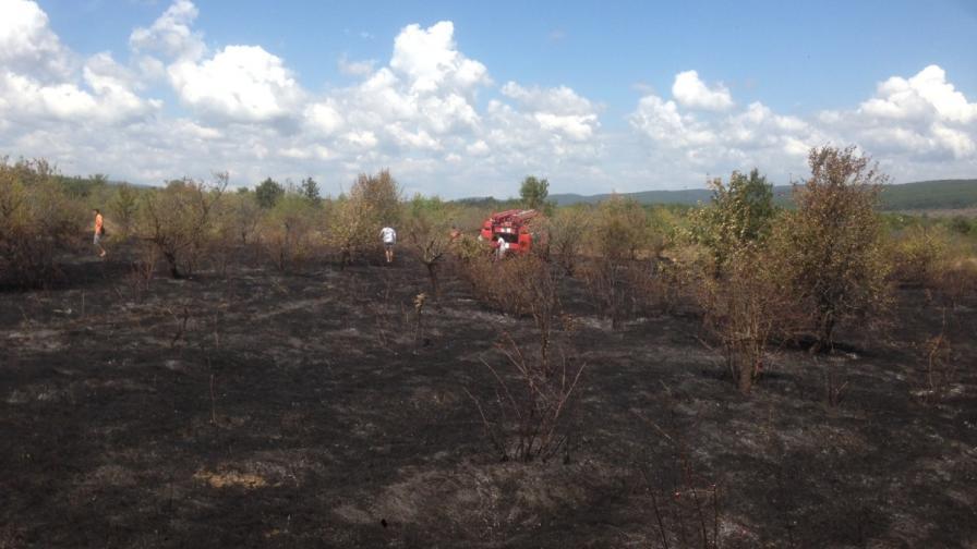 Евакуираха летовниците от Иракли заради голям пожар