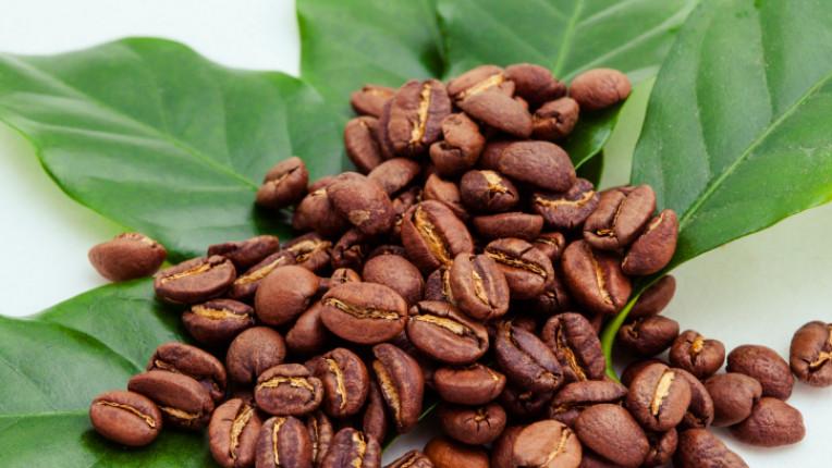 кафе зърна листа