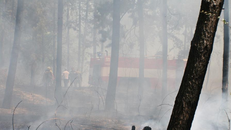 Битката с огнените стихии в страната продължава