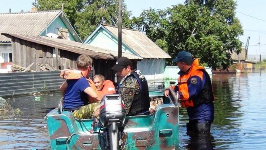 Гризачи атакуват хората в наводнените райони на Русия