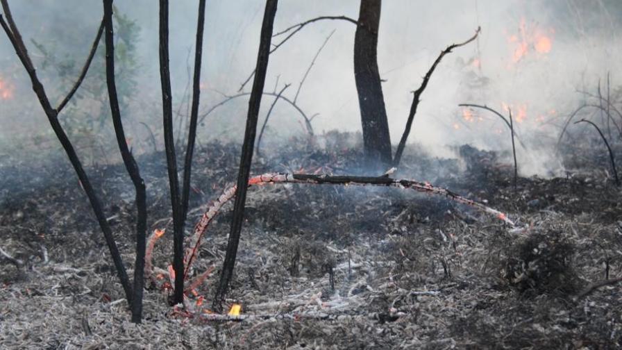 Нов пожар в района на Свиленград