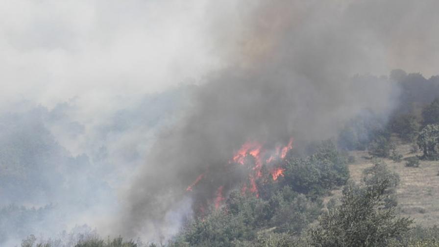 Пожарът край Свиленград е обхванал нови 2 000 декара