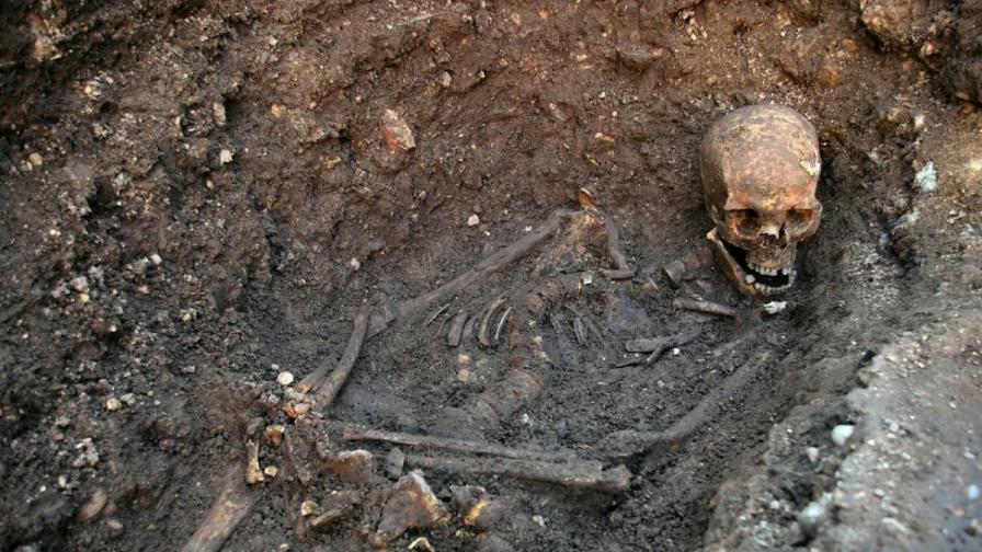 Учени: Крал Ричард Трети е имал глисти