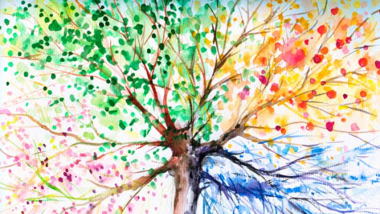 сезони дърво есен зима пролет лято