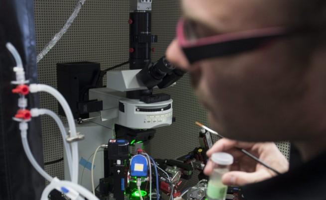 Изпробваха нова технология за ваксиниране чрез лазер