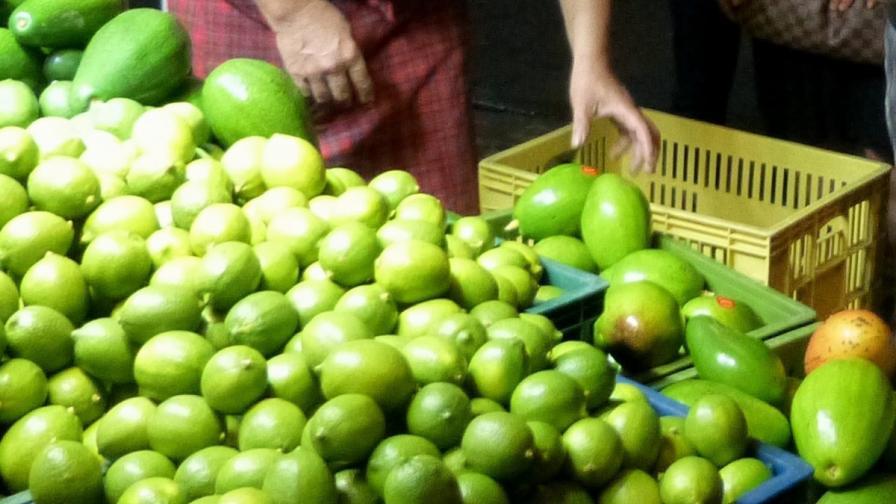 Борим килограмите с авокадо