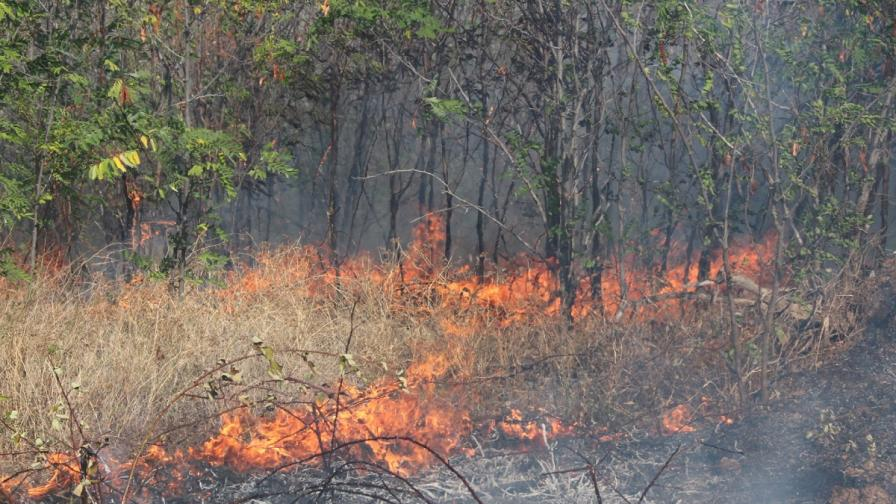 Голям пожар заради стрелба на военни