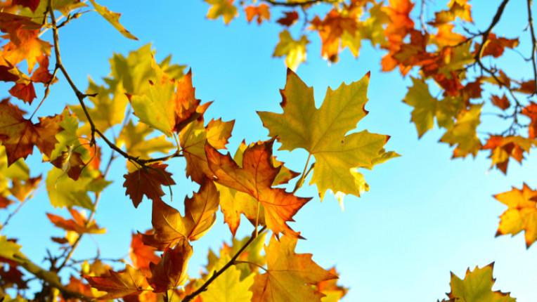 есен октомври