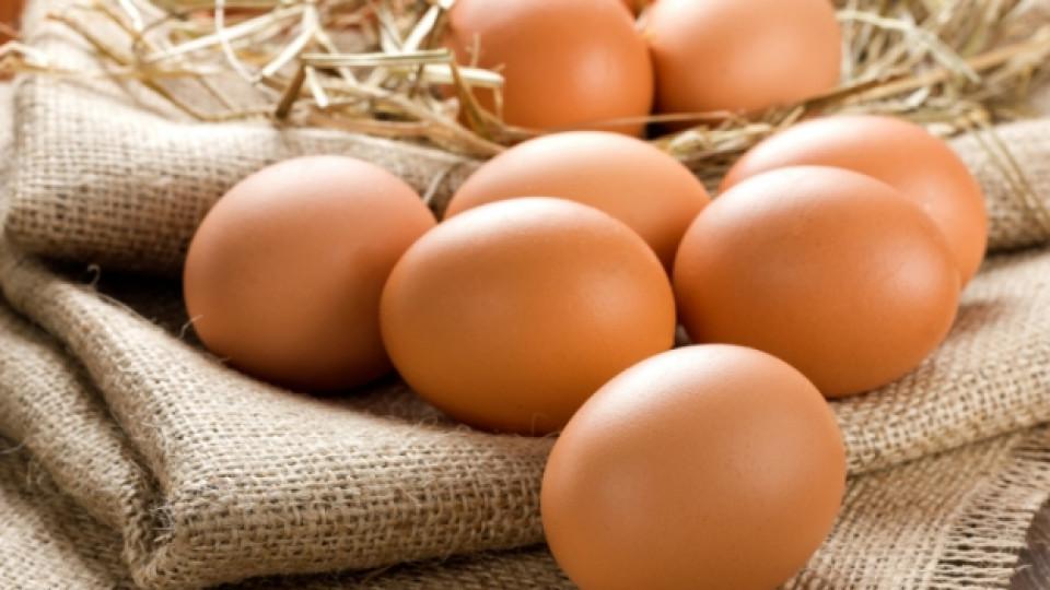 Птичите яйца са били основна част от препитанието на човечеството още от Древността