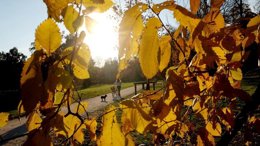 Октомври е бил петият най-топъл месец на планетата