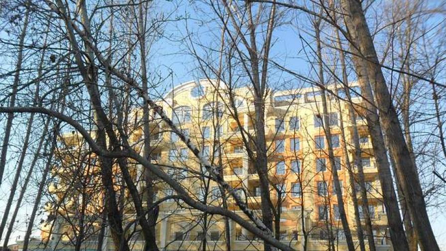 Изсъхнала топола падна на метър от работник в Пловдив